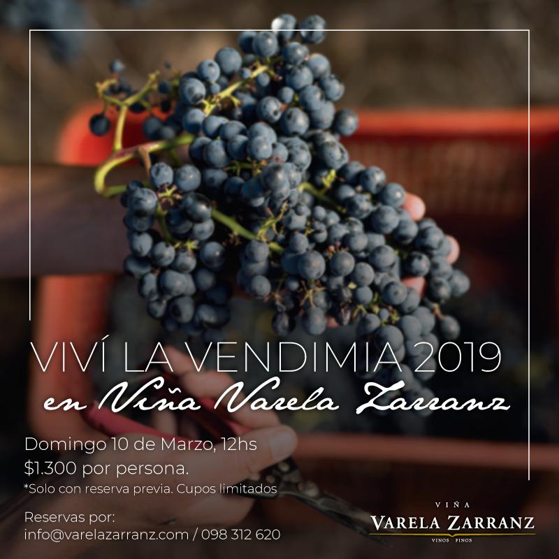 ¡Un año más, Viña Varela Zarranz los espera para realizar juntos la Vendimia 2019!